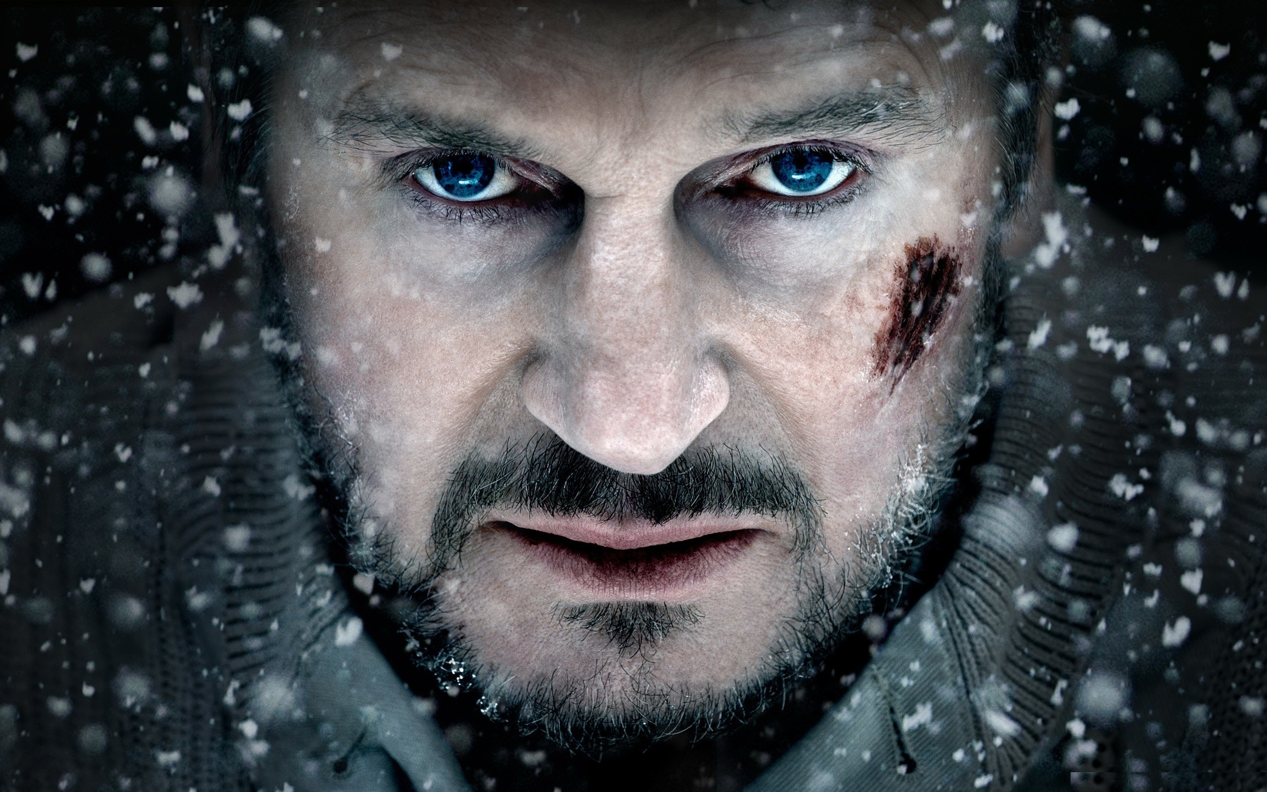 The Grey - Movie Review - Liam Neeson